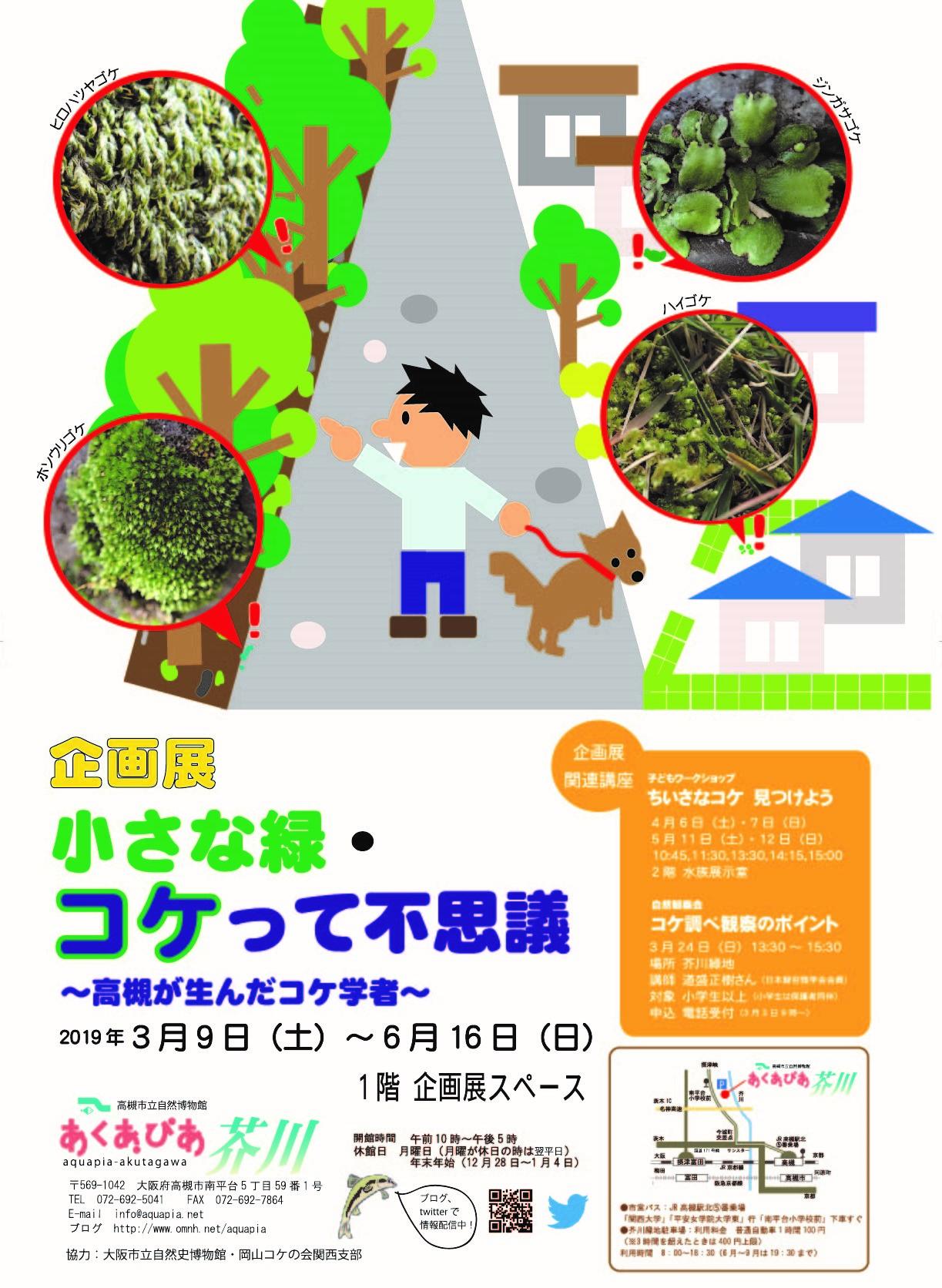 20190309コケ企画展