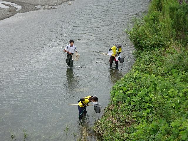 川に入ってトンボを探し中