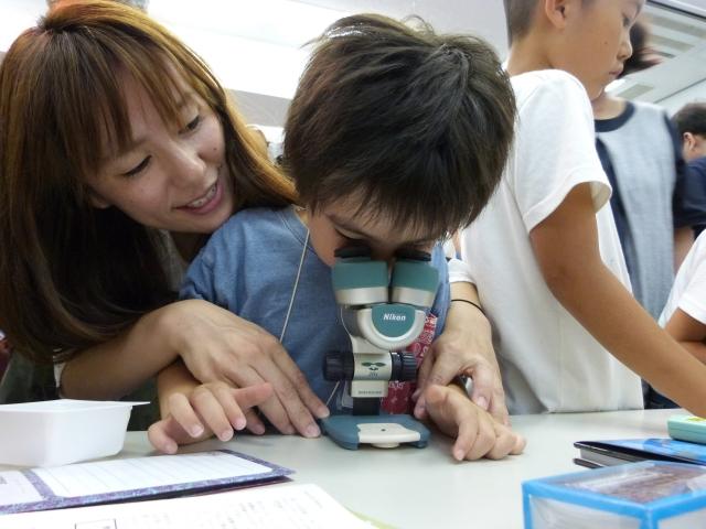 顕微鏡を覗く子ども