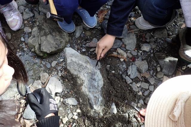花崗岩と砂岩の境目が確認できた岩