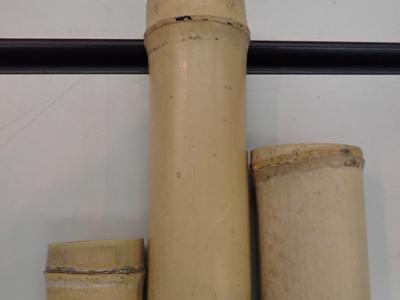 竹の筒の拡大.jpg