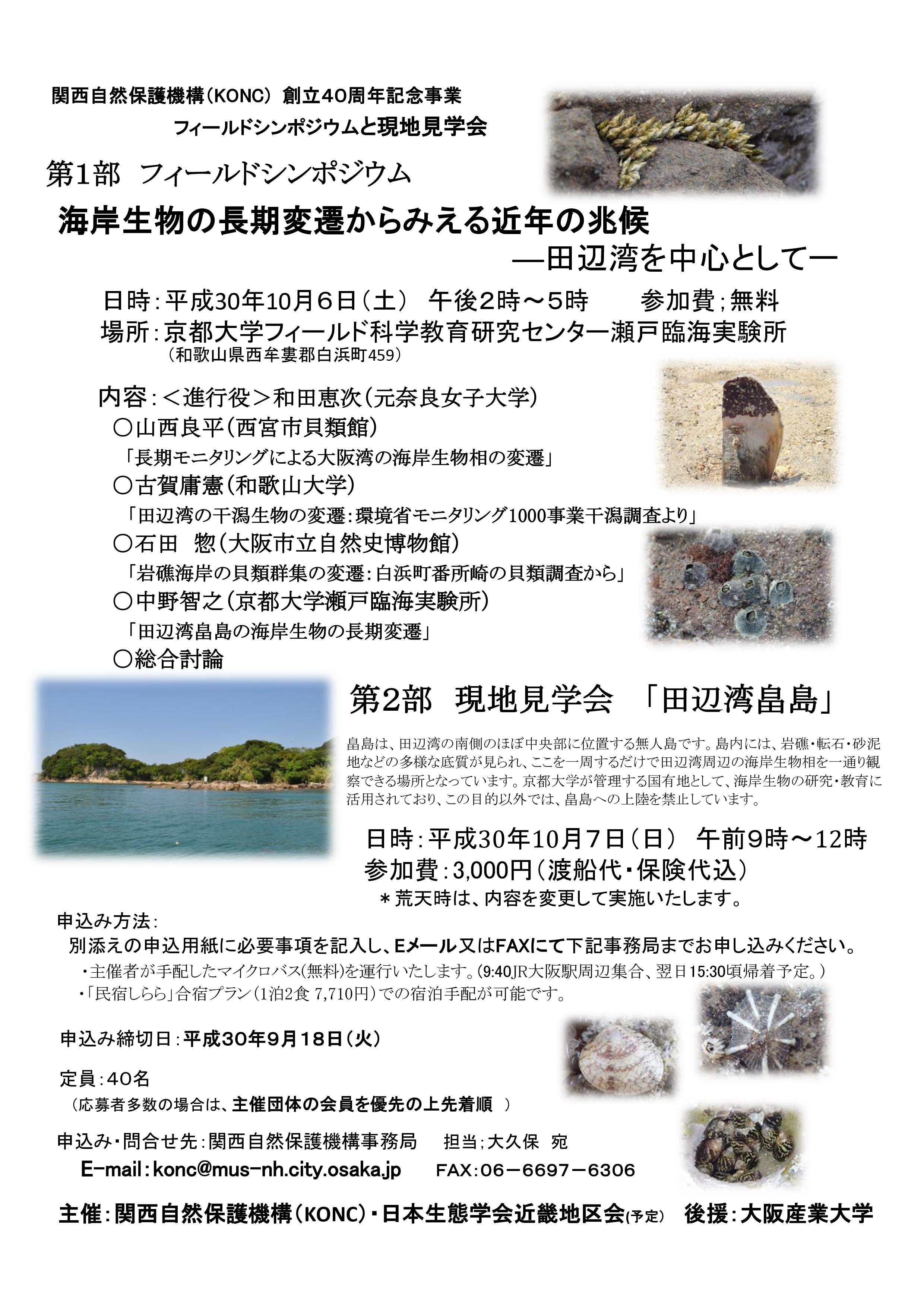 チラシ完成版3m-01.jpg