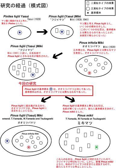 概念図-6.jpg