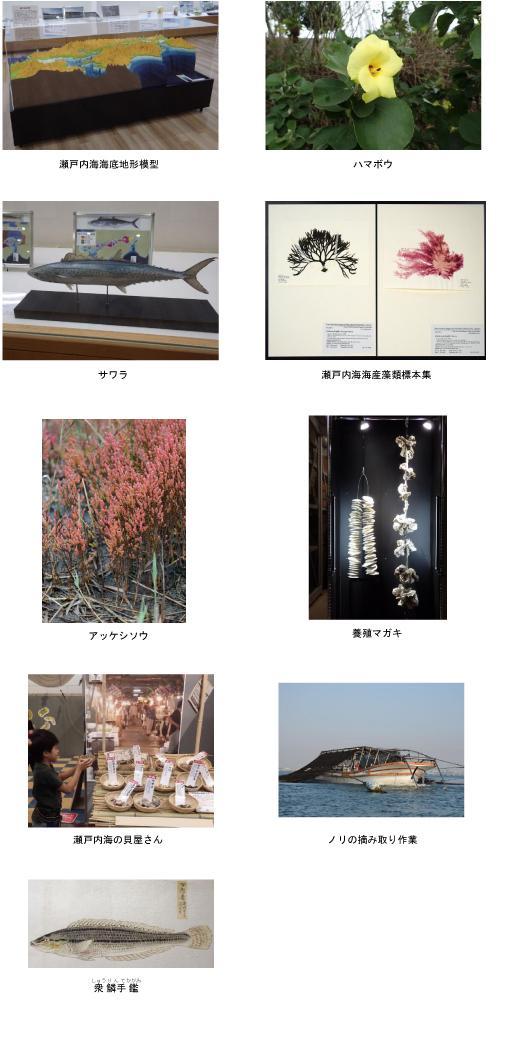 瀬戸内海展プレスリリース_主な展示_1.jpg