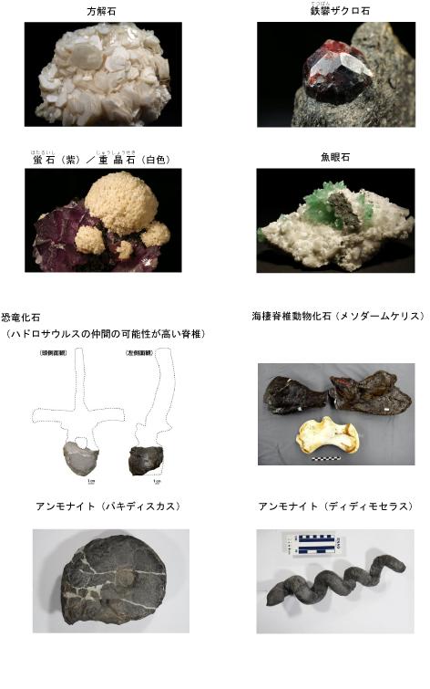 石は地球のワンダー展_展示.jpg