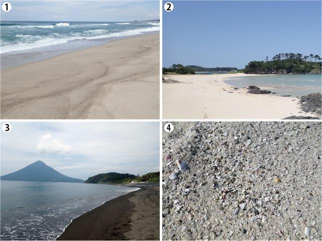 1.日本の砂浜.jpg