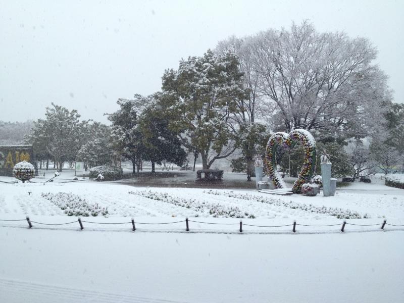 140214shizenshi.jpg