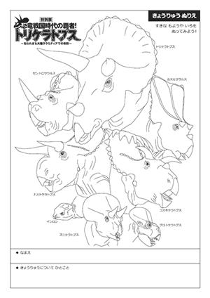 トリケラトプスとその仲間の大きな特徴は角とフリルにあります。その数や形は同じではなく、多種多様です。本展ではケラトプス科の様々な恐竜を展示し、復元画を描い