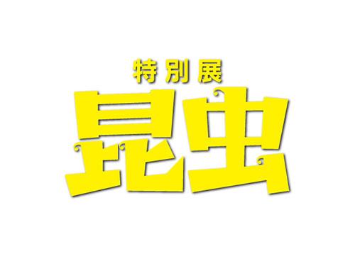 konchu_logo.jpg