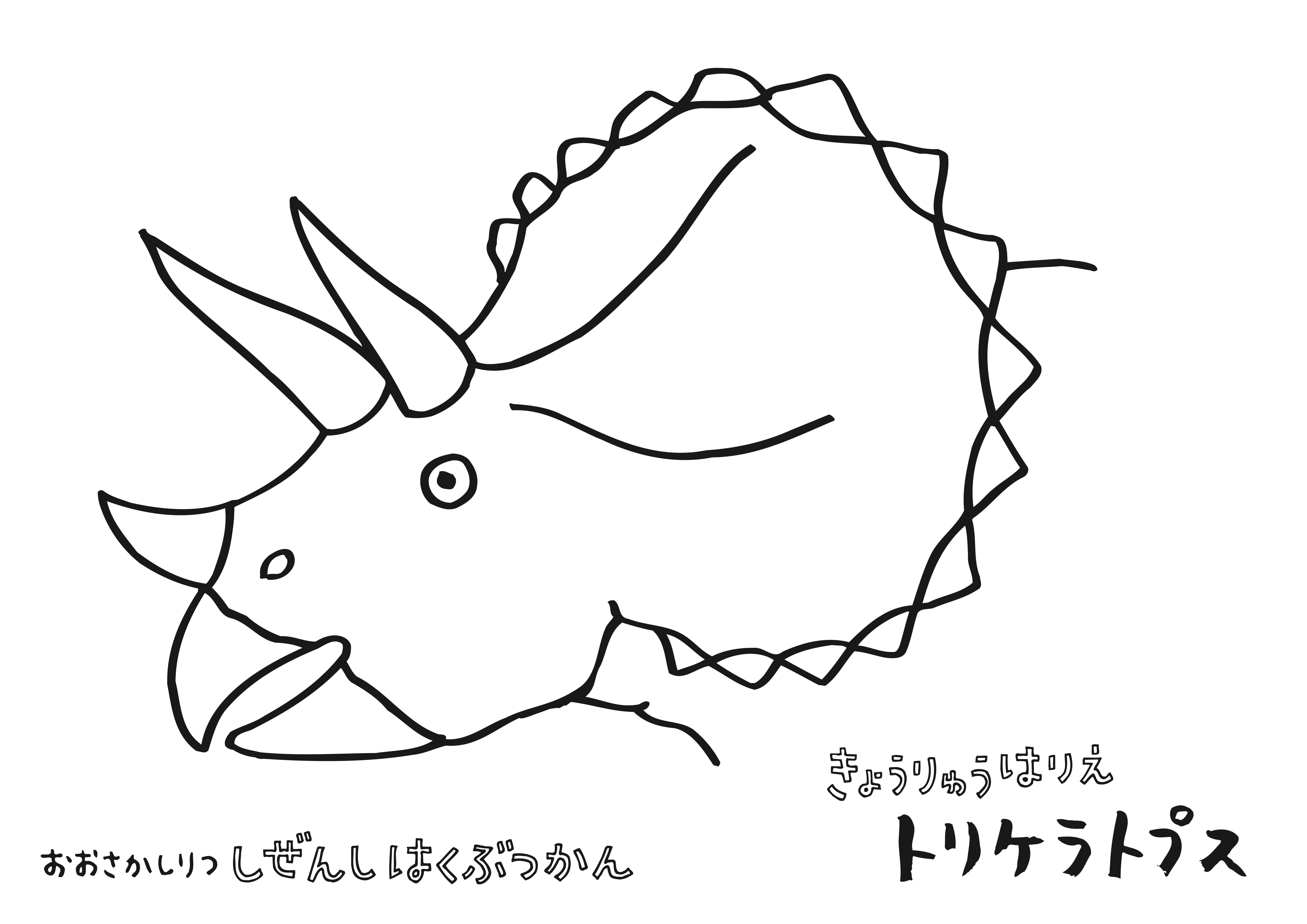 トリケラトプス.jpg